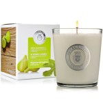 Scented Candle 'Wild Fig Tree' - La Chinata